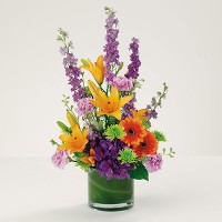 Bright and Bold Get Well Beauty in a Cylinder