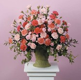 Carnations of Pink and Coral in a Planter Urn